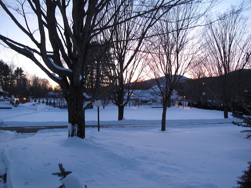 8244_Winter