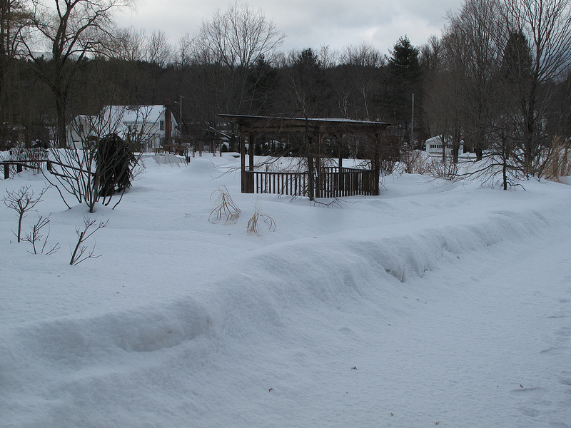 8279_Winter