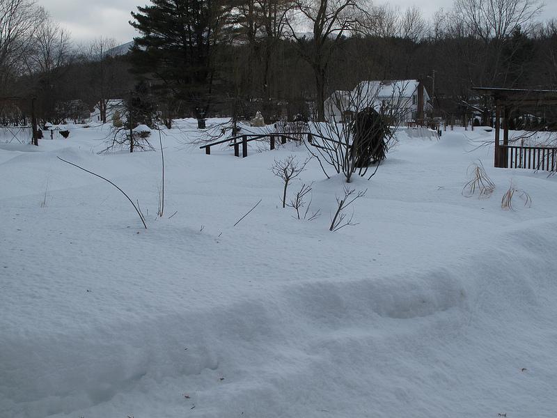 8280_Winter