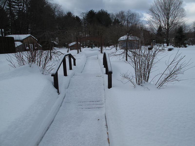 8283_Winter
