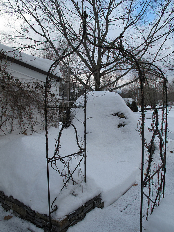 8321_Winter