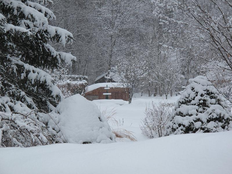 8402_Winter