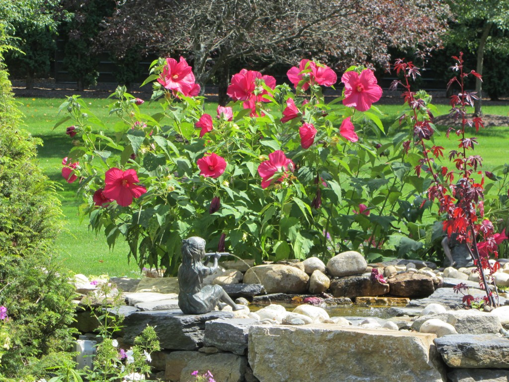 201209 Garden 019
