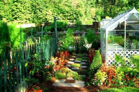 20 Greenhouse & Veggie Garden