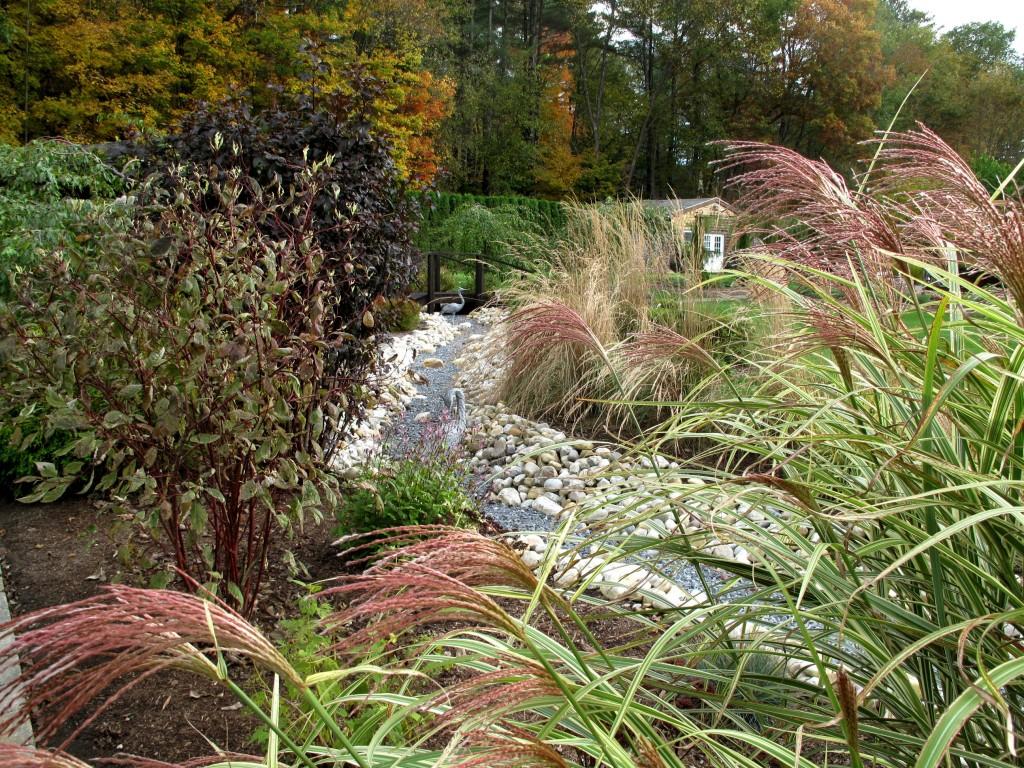 20090930 Garden 032