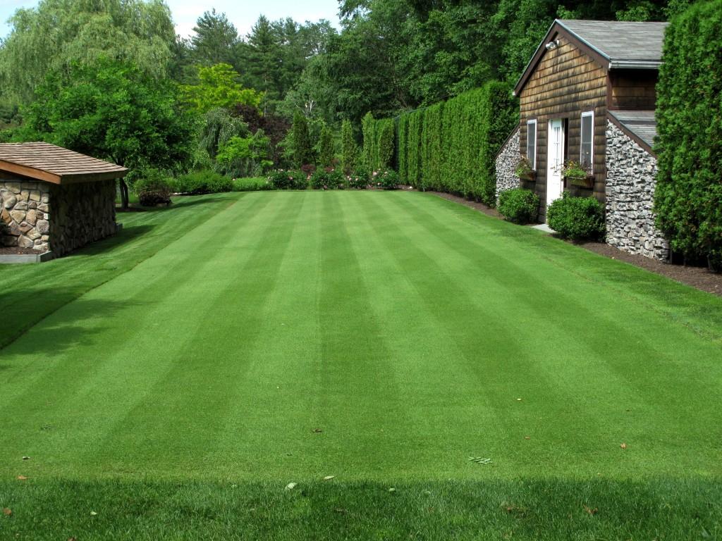 201106 Lawn Bowls B