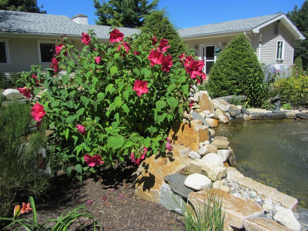 201209 Garden 030
